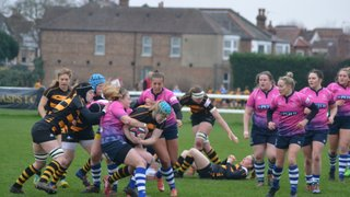 Wasps blow away Sharks with first half dominance to seal 43-12 victory