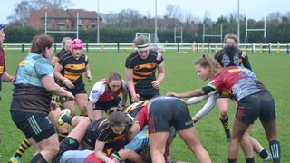 Wasps fall just short in epic encouter with Harlequins