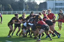 Wasps too strong for Gloucester-Hartpury in development league
