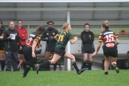 Foxes remain undefeated on home ground