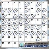Bonus Ball Draw