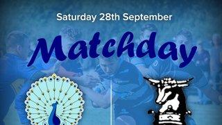 Senior Rugby Saturday 28th September