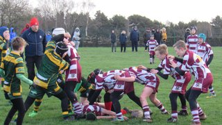 Rugby wins the day at West Park for the U12s