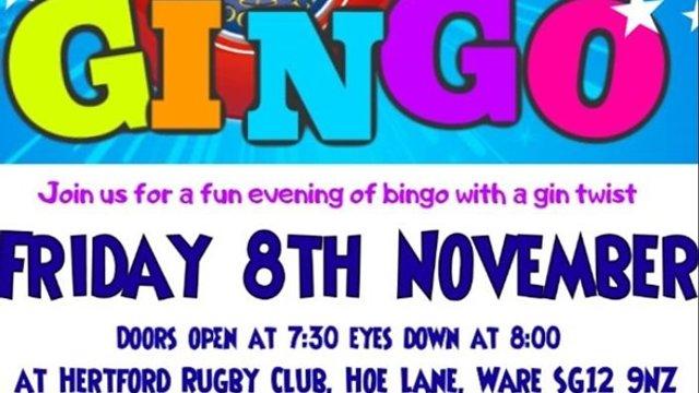 GINGO BINGO - new event at the Club - Friday 8th November