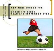 NEW MINI SOCCER FOR UNDER  7 Girls