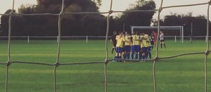 Norwich United 2 Walsham Le Willows 0