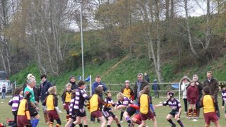 Exmouth U11's reach Devon Shield Final