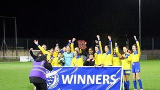 Sussex FA Challenge Trophy Final