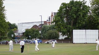 Hamptonians victorious on the Thursday of Cricket Week