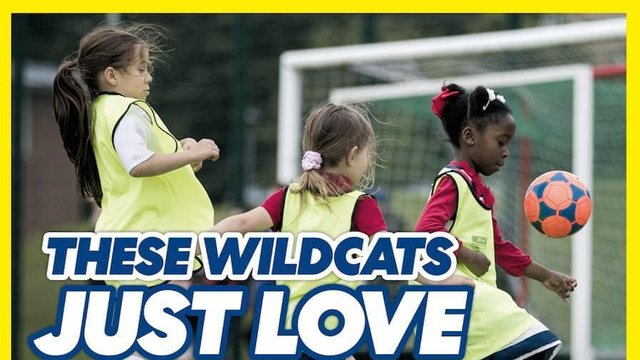 Great Turnout for first Wildcats Session