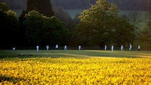 DATE SET FOR THE RETURN OF RECREATIONAL CRICKET!