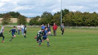 Falkirk Minis vs Forrester minis 13/09/15