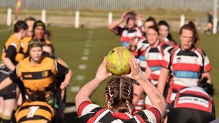 Hartlepool Rovers Ladies v Derby Vipers