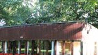 Beaudesert Camp Under 11s.