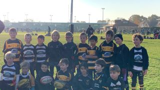 Ealing Festival- Wasps under 8's