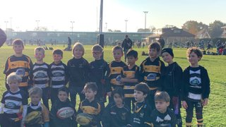 WASPS U8's - A team step too far / B team caught short.