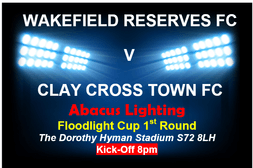 ABACUS LIGHTING FLOODLIGHT CUP - 2019