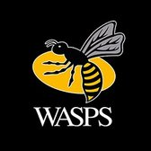 Buy Wasps Tickets