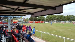 Punjab United 0-1 Broadbridge Heath
