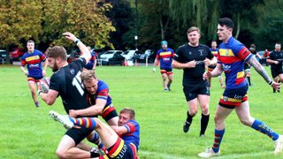 A six try and near faultless performance by Leamington  - a treat for the VP's