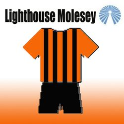 Lighthouse Molesey Vets