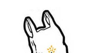 Bramley RL Fundraising Bag Pack (Morrisons - Swinnow)