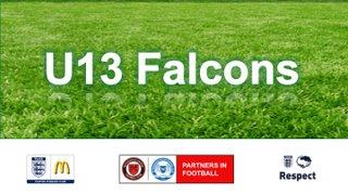 U13 Falcons