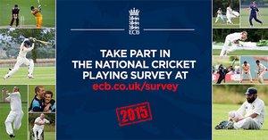 ECB Player Survey