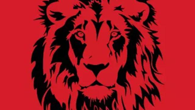 U8 Lions
