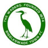 Biggleswade Town 1 Ware 2