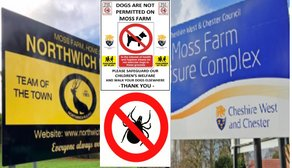 Bugs invade the Moss Farm pitches: Health risk to domestic pets!