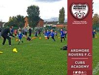 Cubs Academy