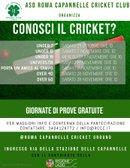 Conosci il Cricket?