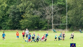 AWRFC - Micros and Minis Start of Season Day - 24th August 2019