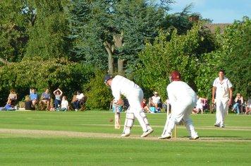 2014 v Brentwood a Adam London batting