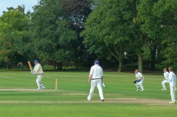 2014 PB playing to the leg side