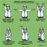 Free Online Stage 1 Umpiring Challenge for Surrey Clubs