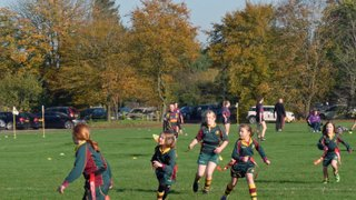 Dragoness's First Home Tournament, 01/11/15