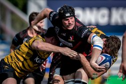 Tigers on Ropes but Valley Don't Land Killer Punch