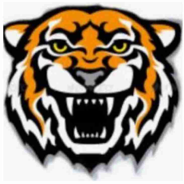 Connah's Quay Tigers U7's
