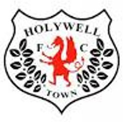 Holywell Town Juniors