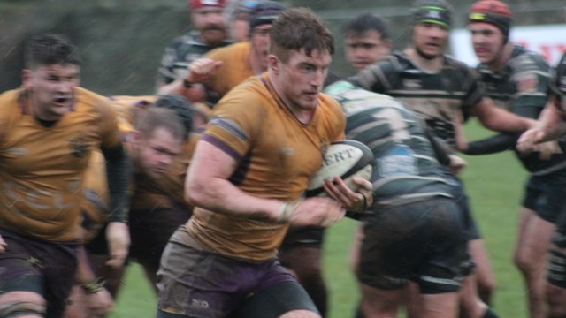 Marr Rugby round-up: Marr Rugby and GHK 2nd XVs defy and defeat Dennis