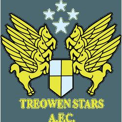 Treowen Stars FC