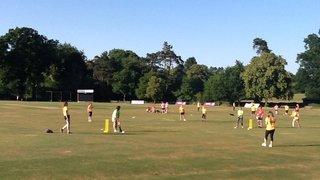 Ladies Soft Ball Cricket Evening