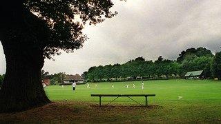 Cricketfield Lane - General