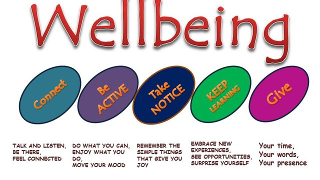 Year of Wellbeing 2.0