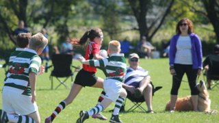 Rugby Ontario Festival 2014
