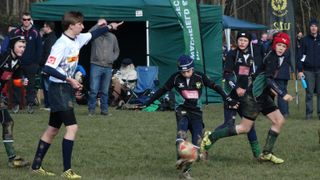Sussex Rugby Festival 2016 Under 12s