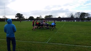 The Wanderers (2nd XV) v Tavistock II - 24th October 2015