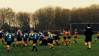 Tigers u13 v Saltash